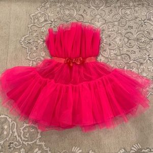 SHEIN Pink Tulle Dress